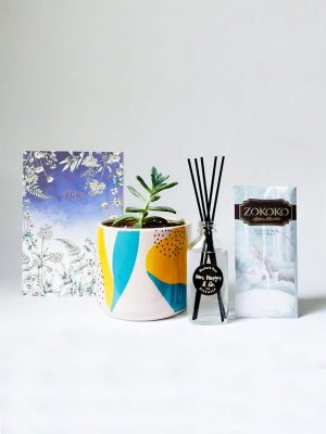 Zen - Gift Pack with Succulent, Diffuser, Chocolate and Notebook