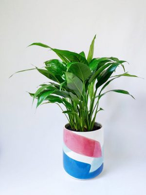 Peace Lily in Brushstrokes Planter