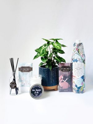 Sweetest Thing Plant Gift Pack