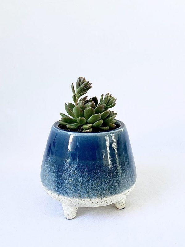 Two Tone Blue Succer Pot