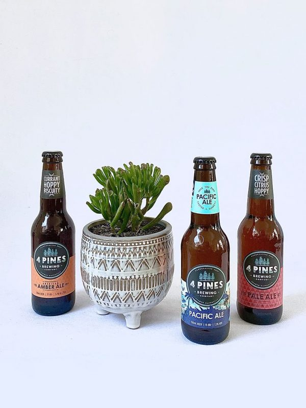 The Taster Plant Gift Pack by Pot and Posy