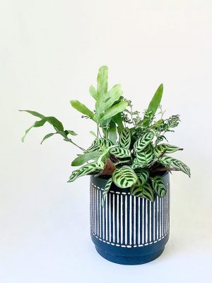 Salad Bowl in Coastal Stripes Planter